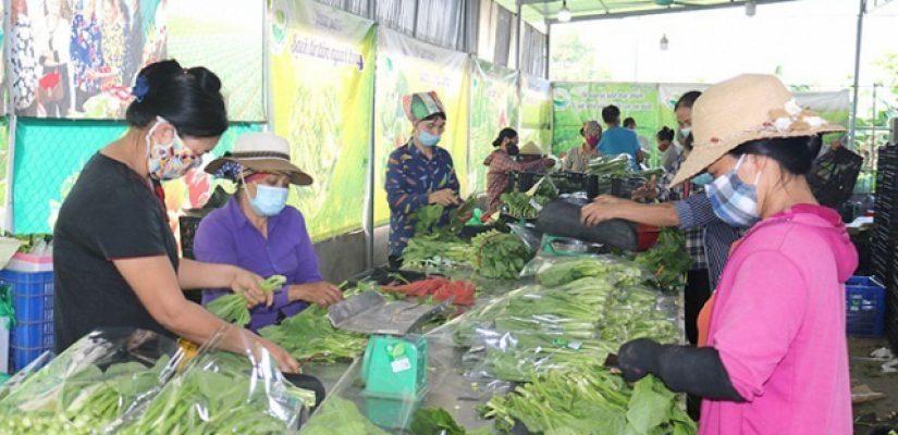 Thúc đẩy tiêu thụ nông sản trong 'bão' COVID-19