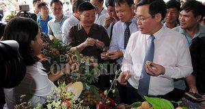 Phó Thủ tướng Vương Đình Huệ chỉ đạo xúc tiến tiêu thụ nhãn và nông sản năm 2018